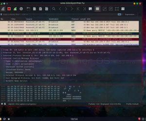 Programcsomagok (PG-Z) - blackPanther Magyarország